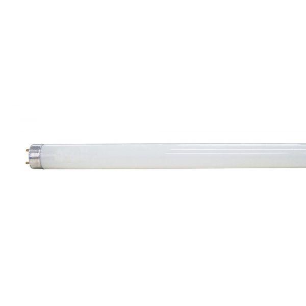 Lâmpada Tubular Led T8 18W Branca Taschibra