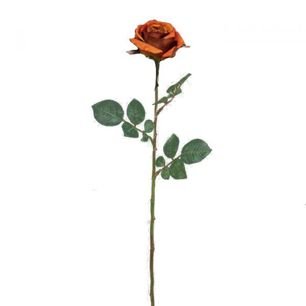 Rosa Ciel 11423  Tijolo Melyana