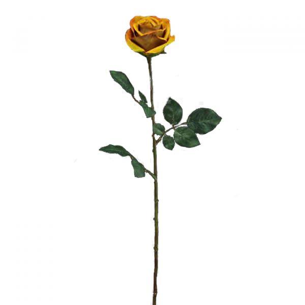 Rosa Ciel 11421  Amarelo Melyana