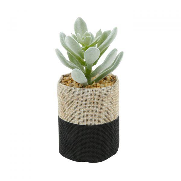 Vaso Plástico Suculenta com Juta 41718 Urban