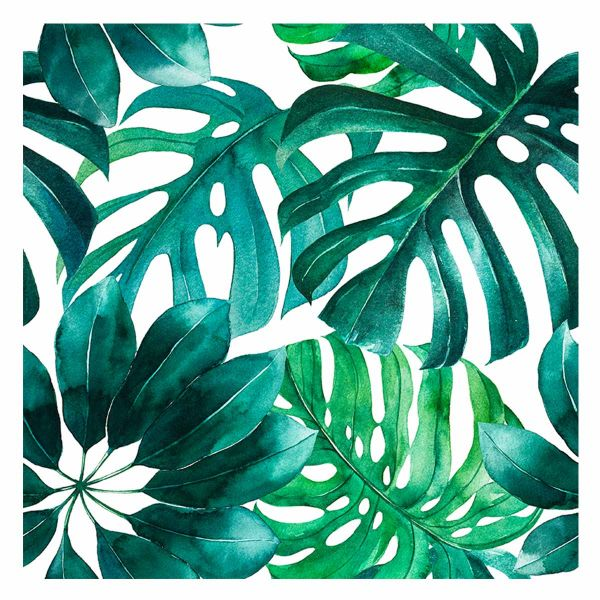 Quadro Tropical Jmy-184113 60x60cm  Estampado Kobe